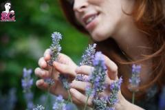 AnnaLee_Lavender3