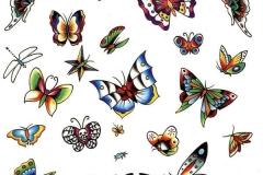 Botterfly (1)
