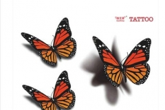 Butterfly-Tattoo-stickers-affixed-to-emulate-color-tattoo-stickers