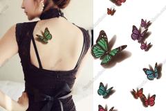 Butterfly-tattoo-stickers-tattoo-stickers-tattoo-stickers-multicolour-tattoo-stickers-3d-tattoo-stickers-3d-28