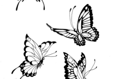 New-Design-Butterfly-Tattoo-2