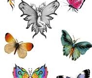 butterfly_tattoos_design_012