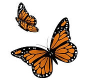 butterfly_tattoos_design_014