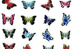 butterfly_tattoos_design_021