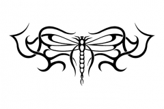 butterfly_tattoos_design_047