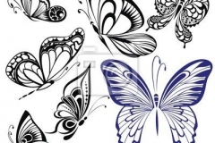 butterfly_tattoos_design_059