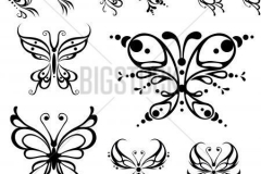 butterfly_tattoos_design_069