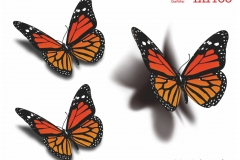 butterfly_tattoos_design_105