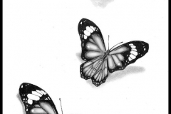 butterfly_tattoos_design_110