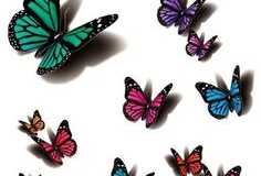 butterfly_tattoos_design_112