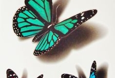 butterfly_tattoos_design_115