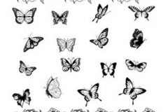 cool-buttefly-tattoos-for-girls