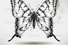 depositphotos_7613199-Butterfly-hand-drawing-vector