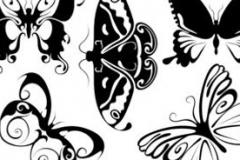 Abstract Butterflies 2 - black illustration symbols