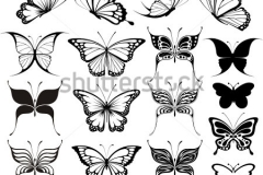 stock-vector-set-of-butterflies-silhouettes-isolated-on-white-background-in-vector-format-very-easy-to-edit-72385630