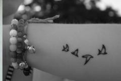 tiny-birds